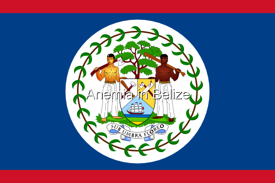 Anemia in Belize