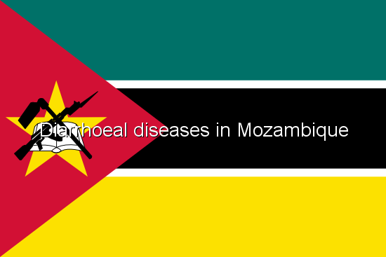 Diarrhoeal diseases in Mozambique