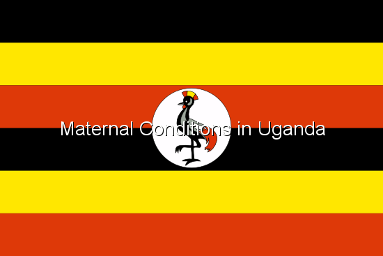Maternal Conditions in Uganda