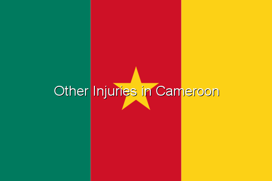Other Injuries in Cameroon