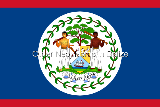 Other Neoplasms in Belize
