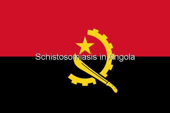 Schistosomiasis in Angola
