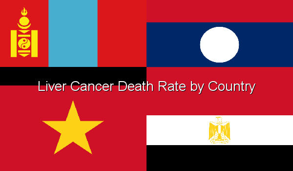 Liver Cancer Death Rate by Country