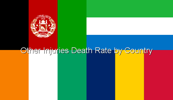 Other Injuries Death Rate by Country